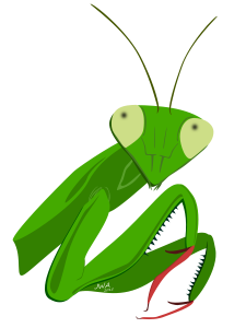 Cartoon_Praying Mantis_1