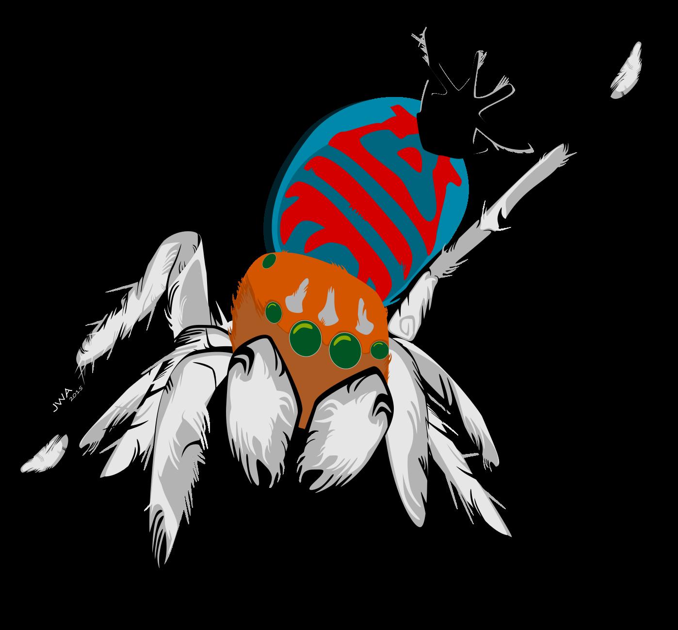 Peacock Jumping Spiders Jared Wilson Aggarwal